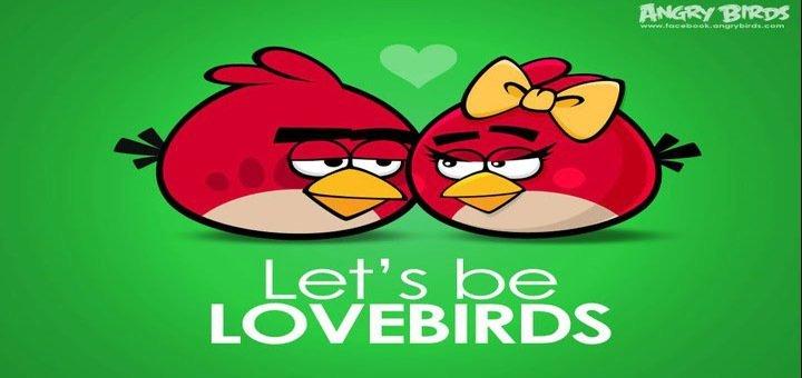 angrybirdslove21