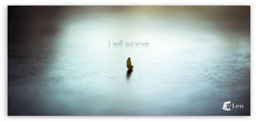survive-t2